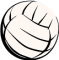 Volleyball's picture